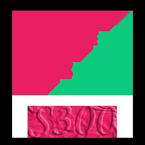 مانیتور وکال سری S300